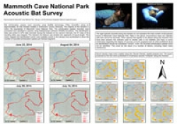 Mammoth Cave NP Acoustic Bat Survey, by Shelby Fulton